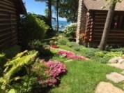 Ann Cole Pierce's Garden