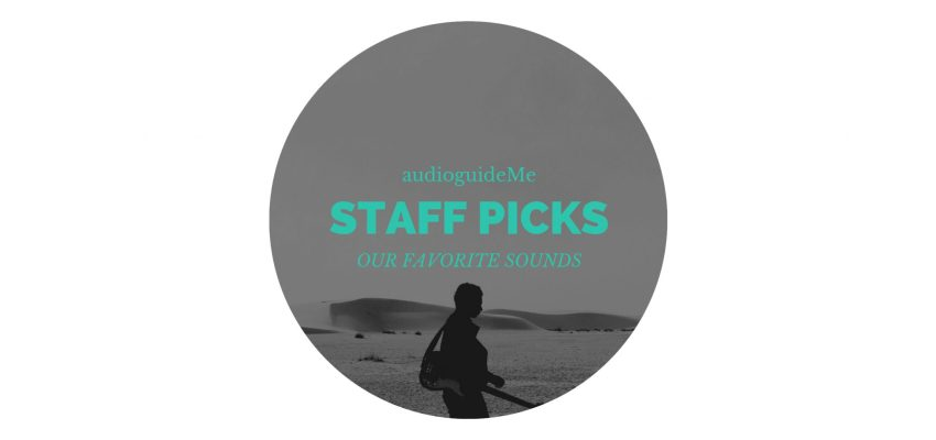 Staff Picks – Sounds of Berlin