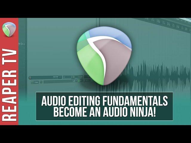 REAPER Tutorial: Audio Editing Fundamentals - Audio Tutorial