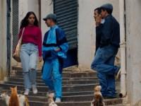 BTeam adquiere en Cannes el filme 'Papicha', presente en Un Certain Regard