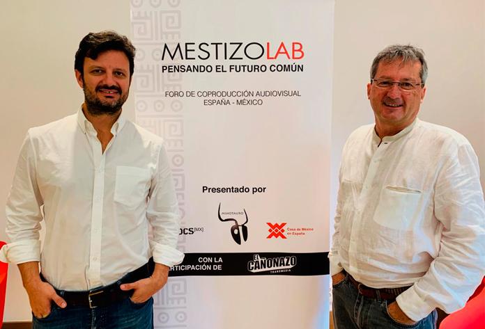 mestizolab 2019