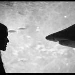 'Letters to Paul Morrissey' – estreno en cines 29 de noviembre