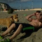 'Amores perros' – estreno 15 de noviembre en Cuatro