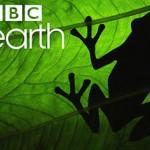 Canal+ emitirá en exclusiva los contenidos de BBC Earth