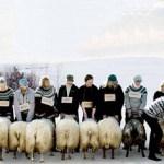 'Hrútar', de Grímur Hákonarson, y  'Mustang', de Deniz Gamze Ergüven, arrasan en Seminci 2015