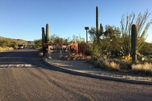 Schuld Saguaro Nationalpark