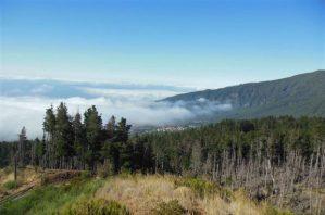 wolkenbehangener Teide auf Teneriffa
