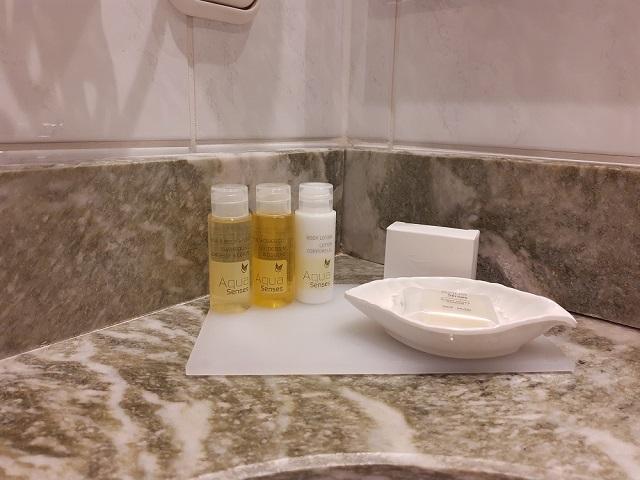 Shampoo und Duschgel sind auch vorhanden