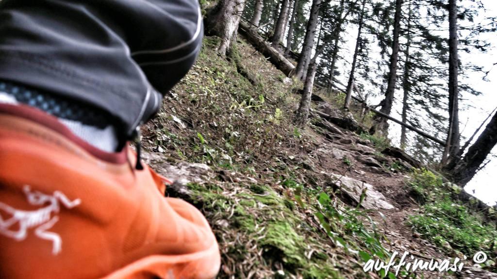 Arc´teryx, trailrunning, laufen, test, norvan, Salomon