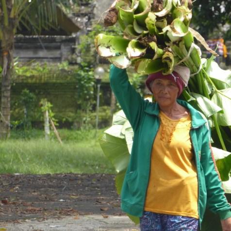 Bali-Land-Frau-Pflanzen
