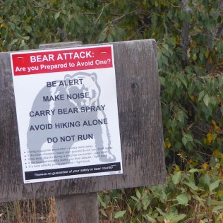 USA-BeBearAware-Hiking