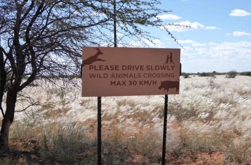 """Schild in Namibia mit der """"Aufschrift Please Drive Slowly, Wild Animals Crossing"""""""