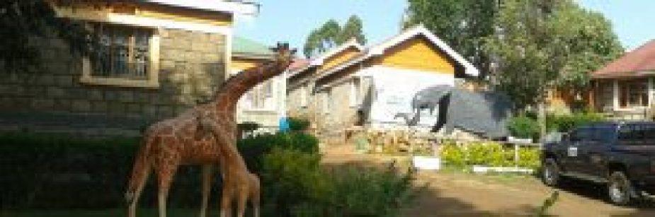 noahs-ark-hotel-kapchwora-accommodation-in-uganda