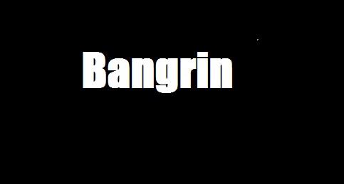 Bangrin: 7 greniers brûlés pour …2 rats-voleurs