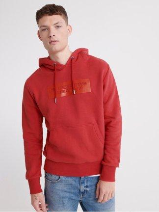 Superdry tonal trophy hoodie