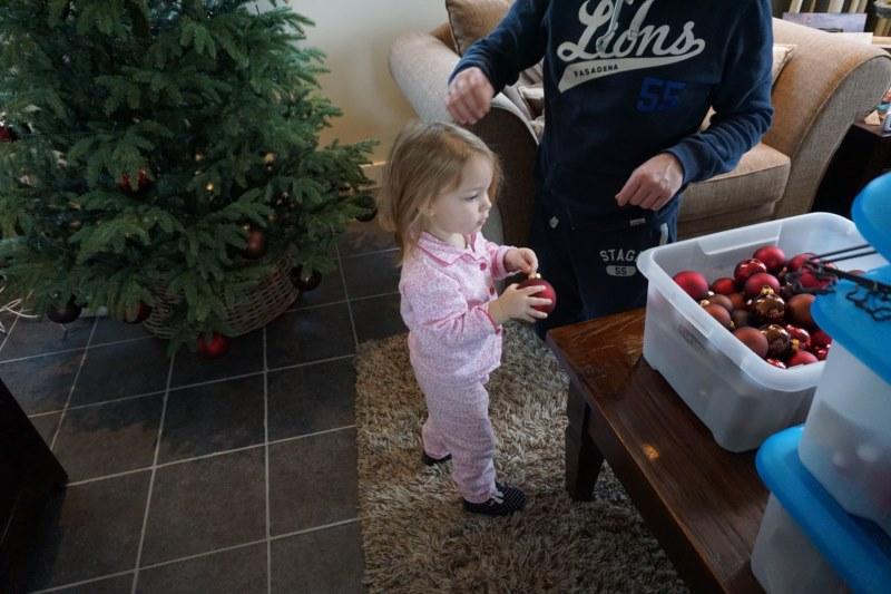 kerstboom opruimen
