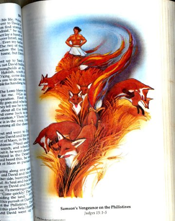 logo_firefox_biblia