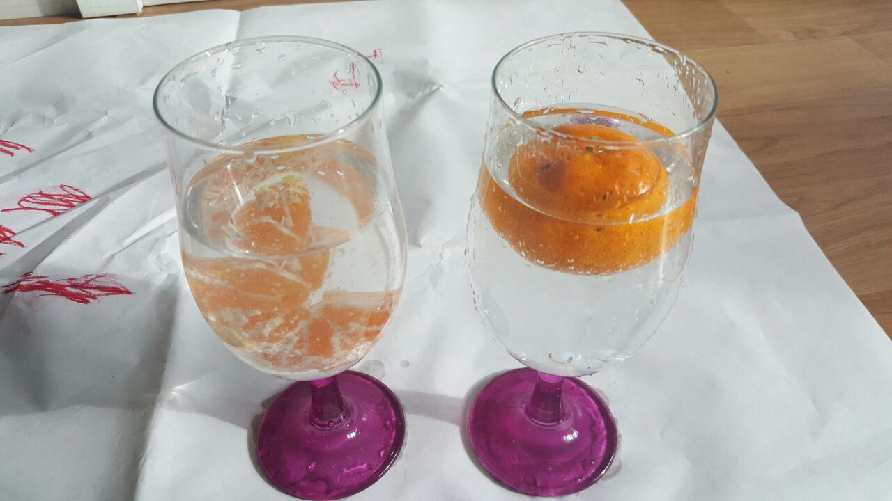 Simple Science Experiment: For 4-6years old
