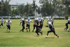 Hornets-y-Falcons-sacan-la-cara-por-Borregos-Toluca-en-serie-vs-Perros-Negros-2