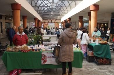 Reconocen amas de casa impacto del Bazar Verde de Toluca (1)