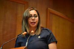 Cuestionan-legisladores-de-Morena,-PT,-PAN-y-PRD-concesionamientos-y-mantenimiento-de-carreteras-en-Edomex-7