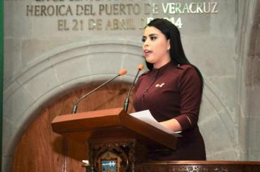 Denuncia la Dip. Montserrat Ruiz los cobros excesivos en el circuito exterior mexiquense y el favoritismo del gobierno local con OHL 2