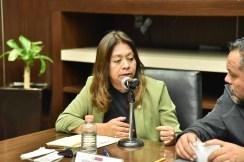 Analizan Diputados y CAEM acciones del Grupo Tláloc para atender inundaciones