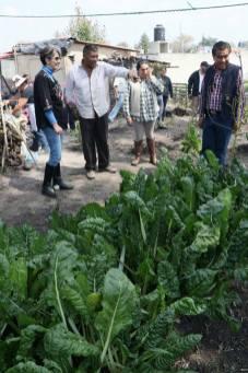 Programa HortaDIF impulsa el desarrollo de las comunidadesPrograma HortaDIF impulsa el desarrollo de las comunidades