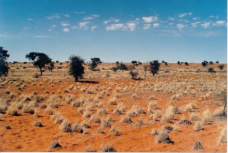 Kalahari … avec un K comme Carême