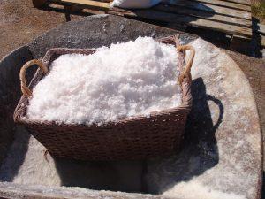 Le sel de la terre (Mt 5,13-16)