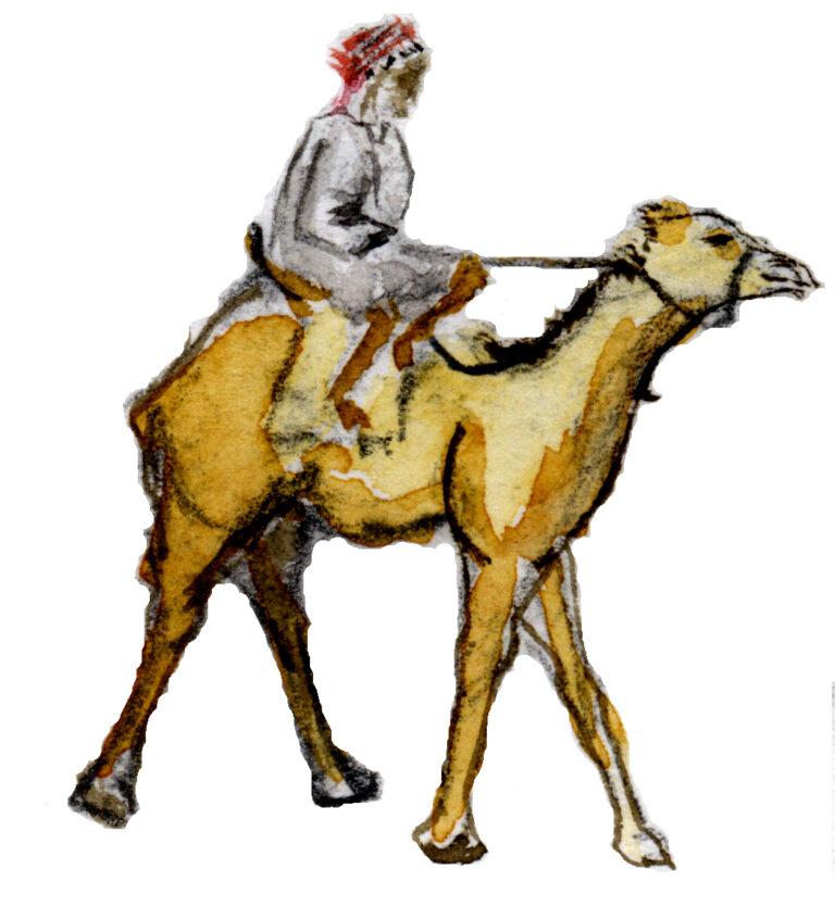 Sinaï, Aïn Khudra