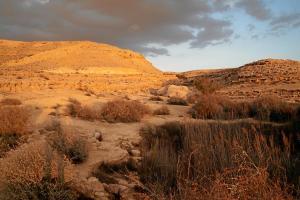 Désert 35 – Repars vers Damas, par le chemin du désert (1R 19)