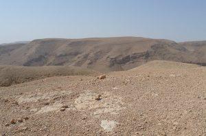 Désert 21 – Quand le bouc aura été emmené au désert (Lv 16)