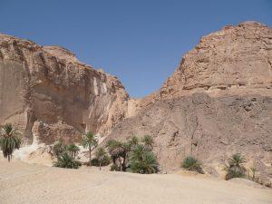 Sinaï - Ain Khudra