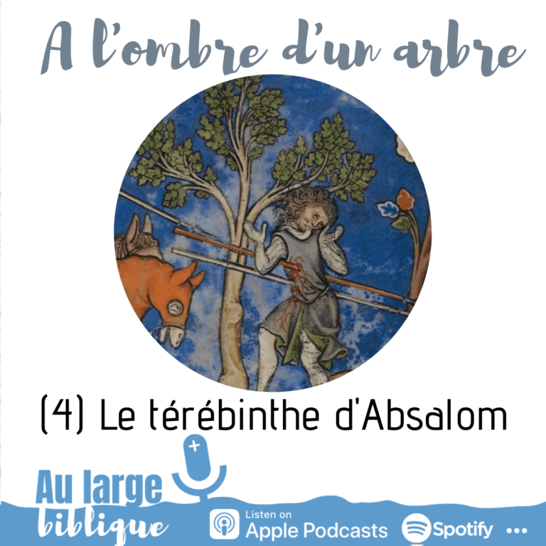 A l'ombre d'un arbre (podcast) Le térébinthe d'Absalom