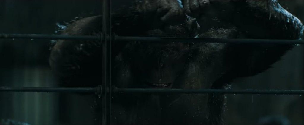 Planeta dos Macacos: A Guerra | Terceiro filme fecha com chave de ouro a Saga de Cesar 1