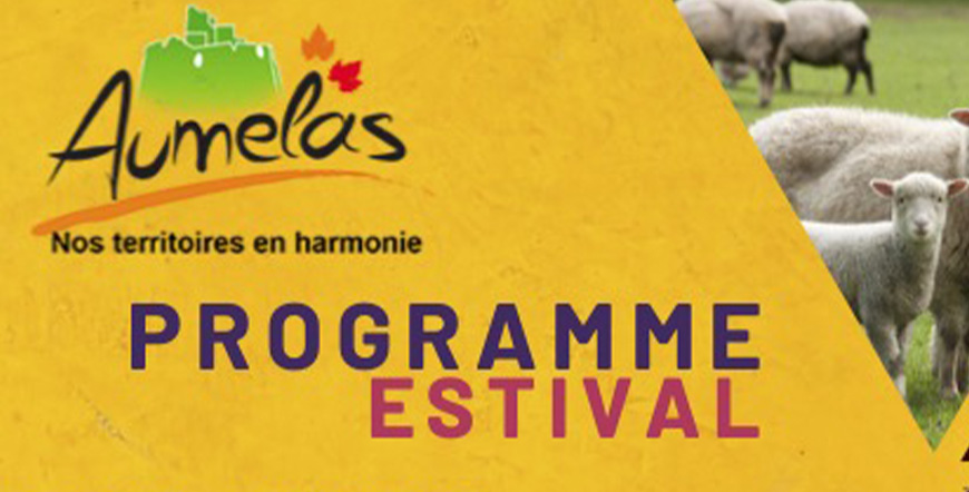 Read more about the article Programme Estival