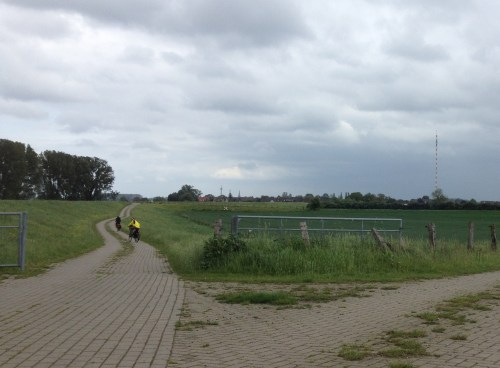 2 Wesel in the distance