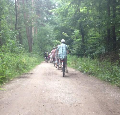 Woodland riding
