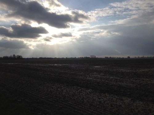 Sun on fields