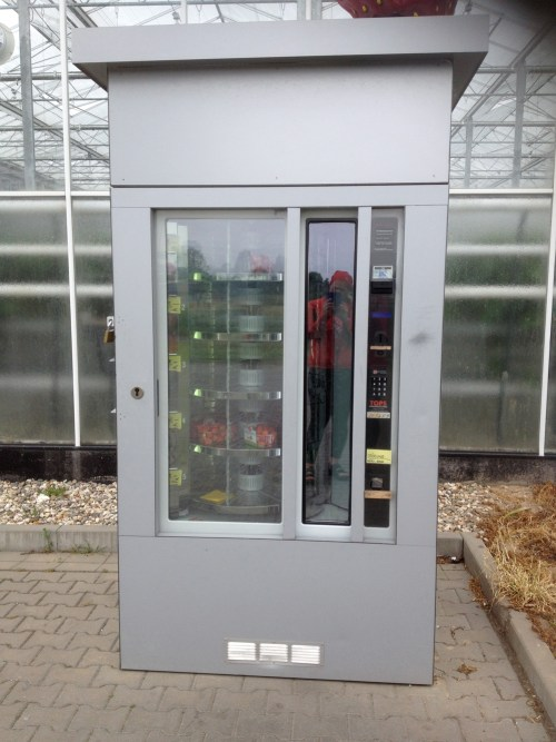Strawberry Vending Machine 2