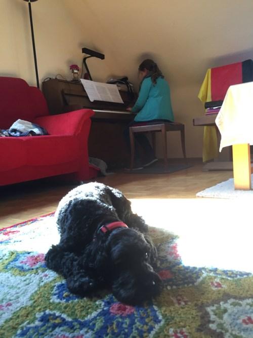 Poppy and Piano