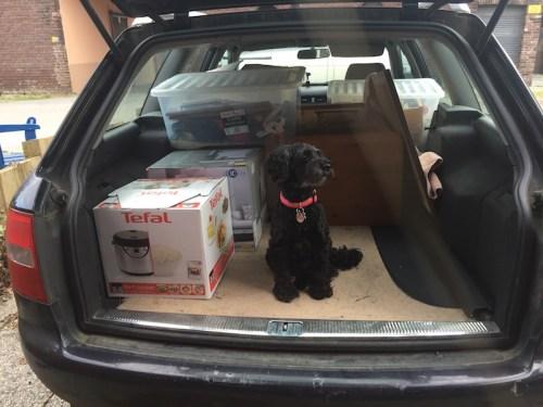 Poppy helping unpack car 1