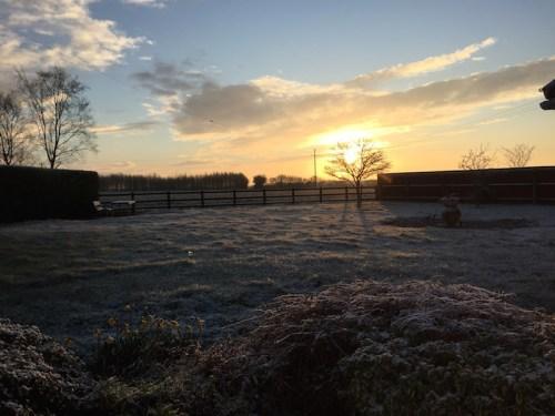 Morning in Witnesham 4