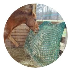 Filet à foin pour chevaux