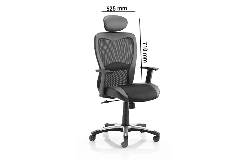 Lucius – Mesh and Leather Black Executive Chair with Headrest