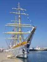 regata-marilor-veliere-5_450x600
