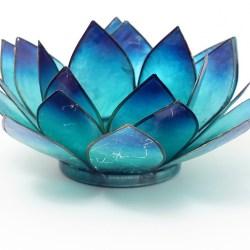 Lotus-Licht