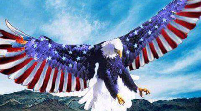 Image result for The American Eagle loses credibility