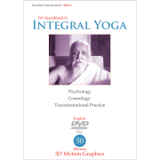 Integral Yoga - Evolution Fast Forward II